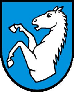 Autoankauf Gächliwil