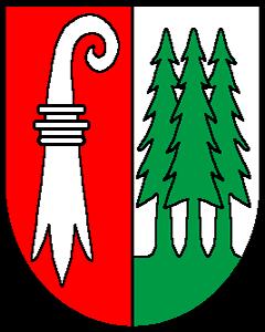 Autoankauf Hochwald